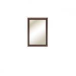 ЭЛЬЗА Зеркало СВ-431(600х850х22)